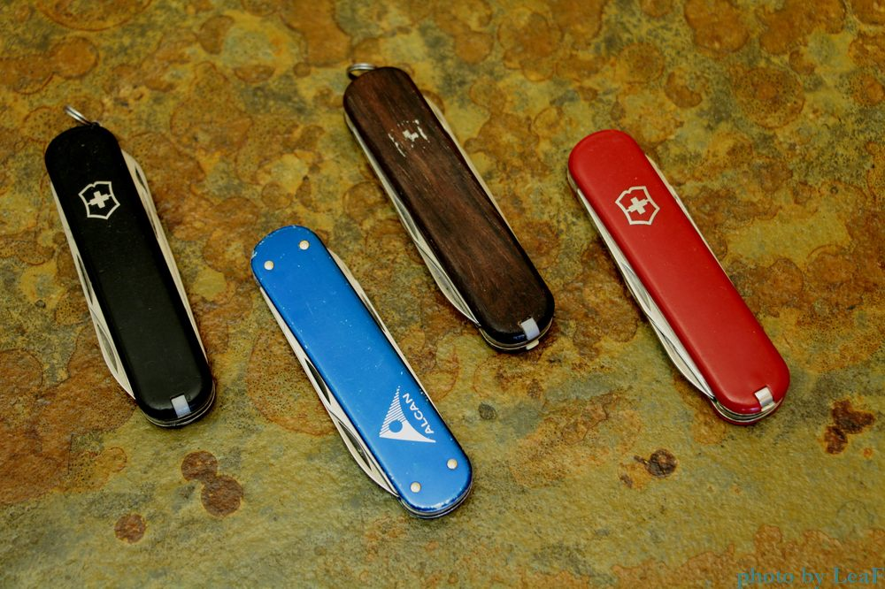 Victorinox Executive currently available with either the standard red or black Cellidor scales - other colors may also be available